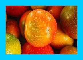Top Superfoods For Healthy Kidneys