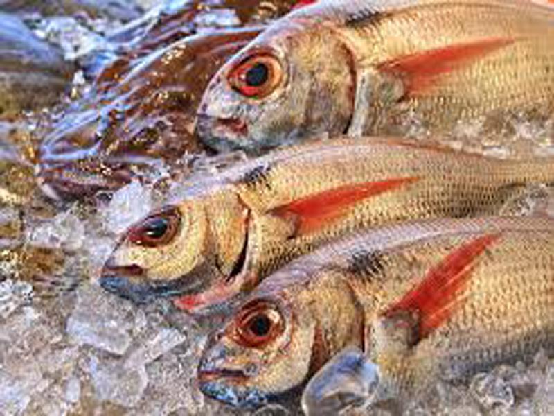 Andhra Chepala Pulusu Recipe