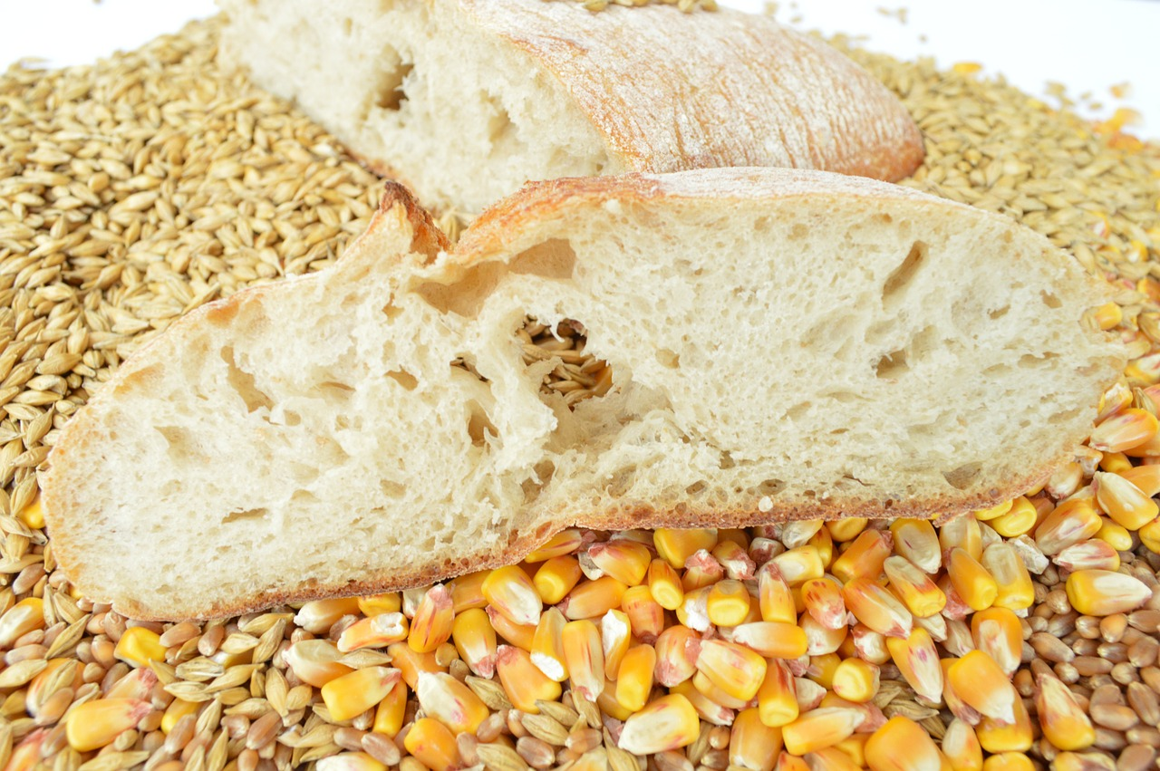 Carbohydrates benefits