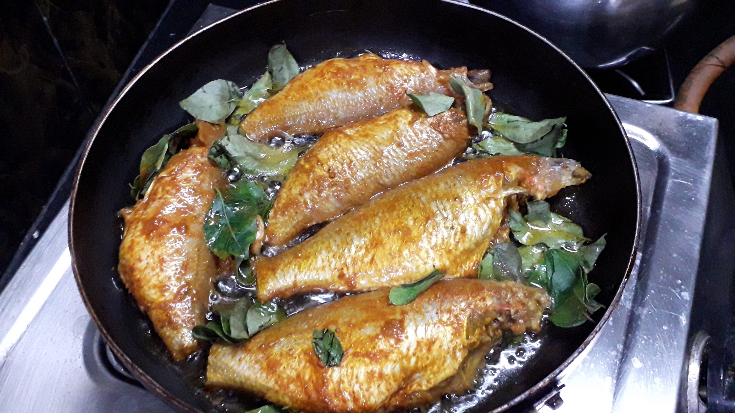 Guruvinja Fish Iguru and Fry
